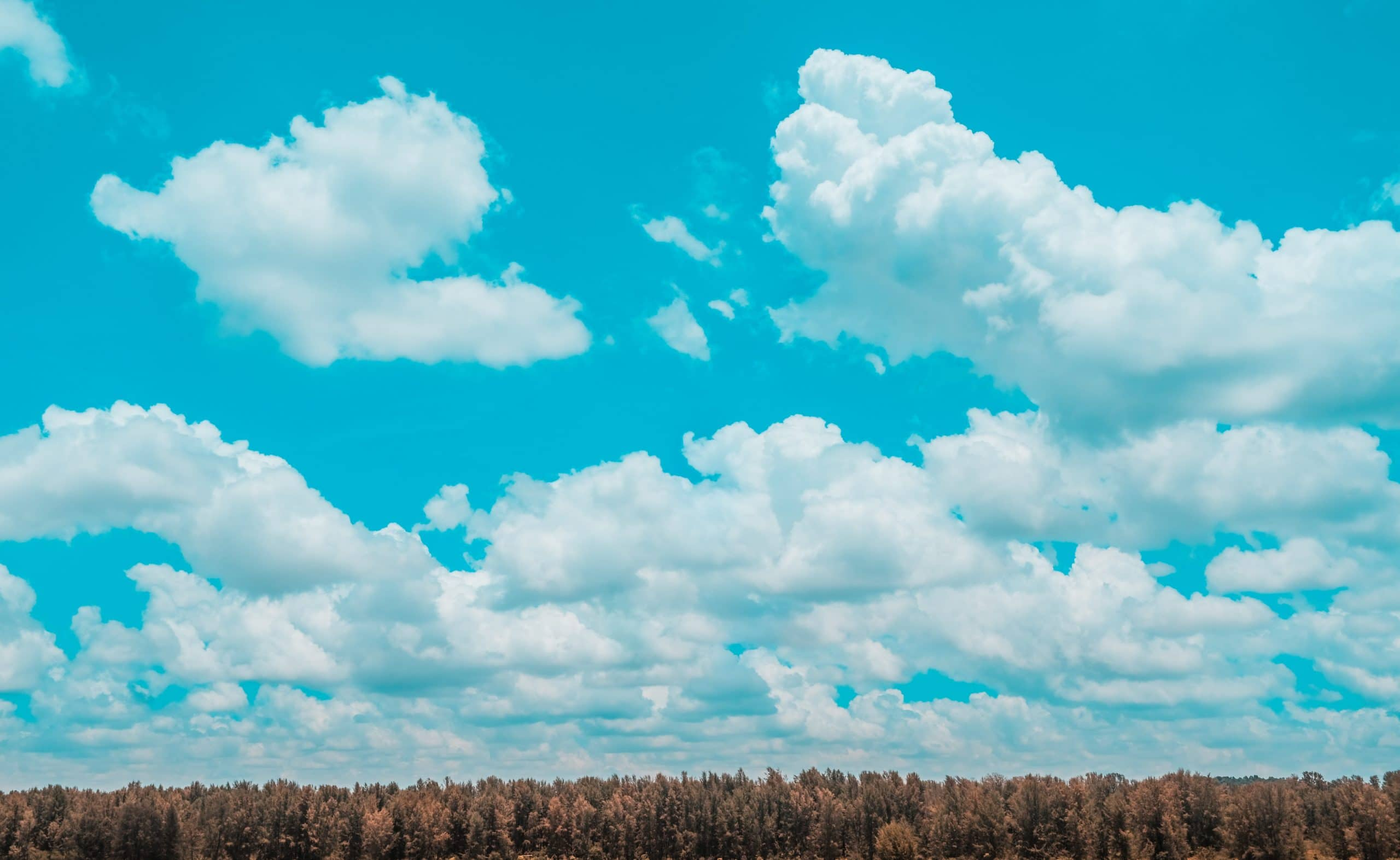 Your Remote Workers Need A Cloud ERP Now!